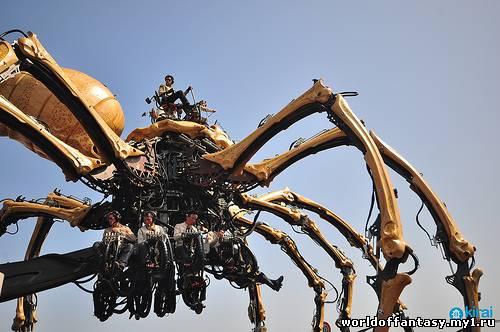 фото пауки гиганты